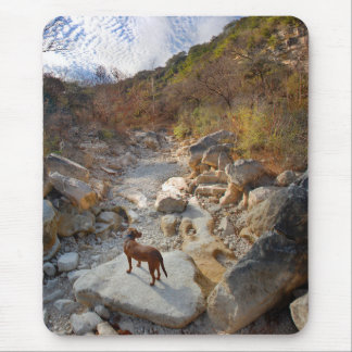 Dog in Barton Creek Dry - Austin Texas Mouse Pad