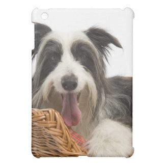Dog in basket 2 iPad mini cases