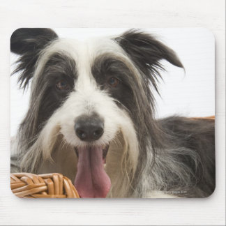 Dog in basket 2 mouse pad