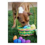 Dog in Basket Easter Card