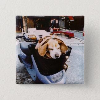 Dog in Basket of Motorscooter Button