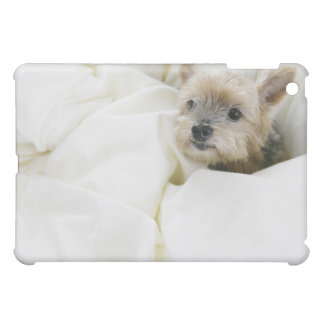 Dog in bed case for the iPad mini