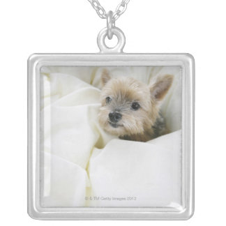Dog in bed silver plated necklace