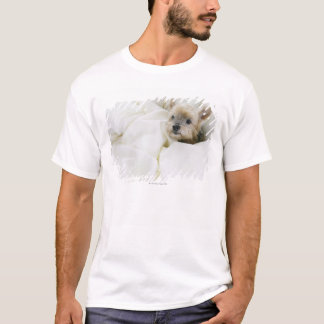 Dog in bed T-Shirt