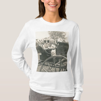 dog in carriage shirt