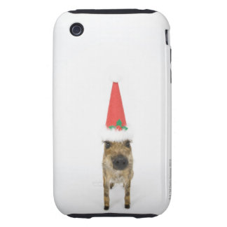 Dog in Christmas hat Tough iPhone 3 Cases
