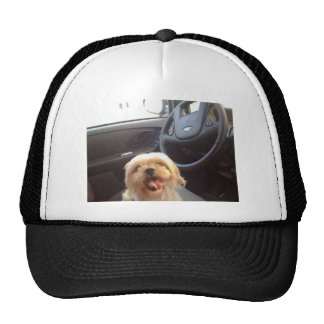 Dog in Driver's Seat Trucker Hat