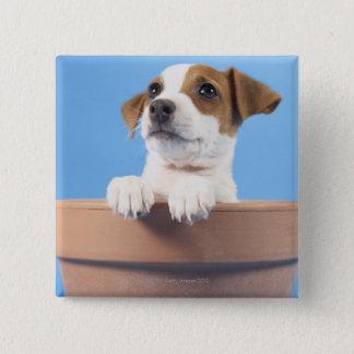 Dog in flowerpot button