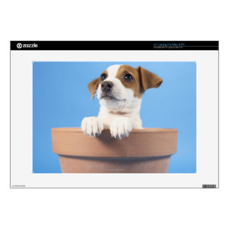 "Dog in flowerpot decal for 15"" laptop"