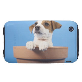 Dog in flowerpot iPhone 3 tough cover
