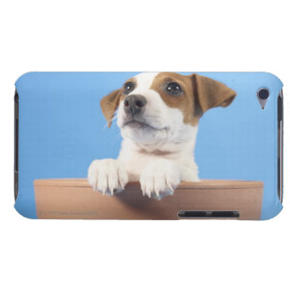 Dog in flowerpot iPod Case-Mate case