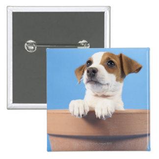 Dog in flowerpot pinback button