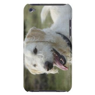 Dog in heath land. iPod touch case