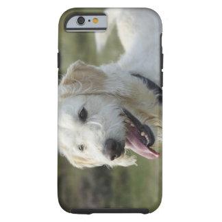 Dog in heath land. tough iPhone 6 case