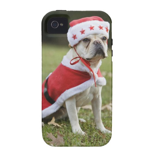 Dog in holiday costume Case-Mate iPhone 4 case
