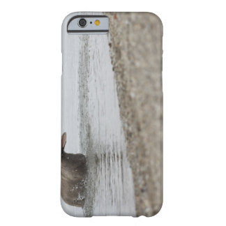 Dog in Lake Shaking Off Water Barely There iPhone 6 Case