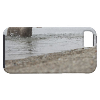 Dog in Lake Shaking Off Water iPhone SE/5/5s Case