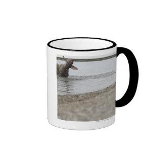 Dog in Lake Shaking Off Water Mugs