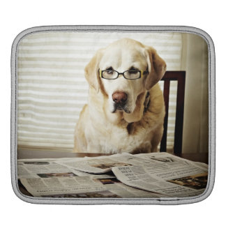 Dog in morning routine iPad sleeve