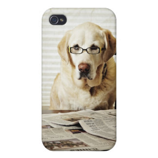 Dog in morning routine iPhone 4 cover