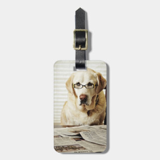 Dog in morning routine luggage tag