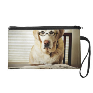 Dog in morning routine wristlet purse