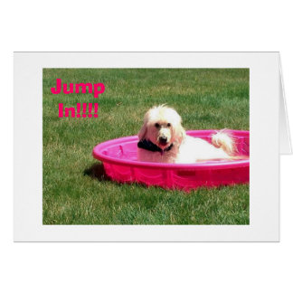 DOG IN POOL SAYS JUMP IN-HAVE FUN ON BIRTHDAY CARD