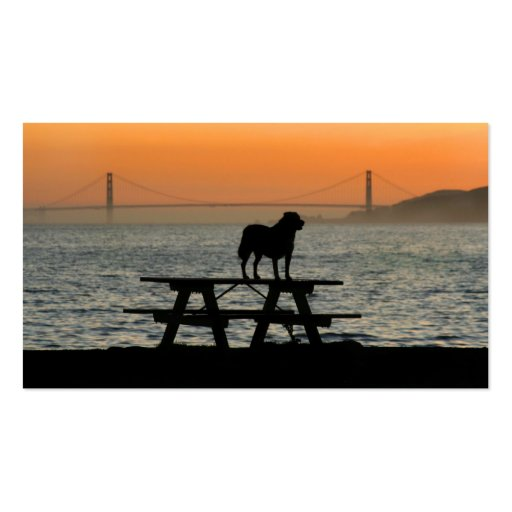 Dog in San Francisco Sunset business cards