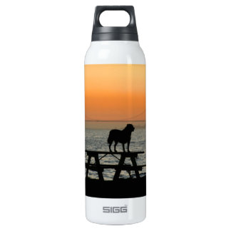 Dog in San Francisco Sunset Insulated Water Bottle