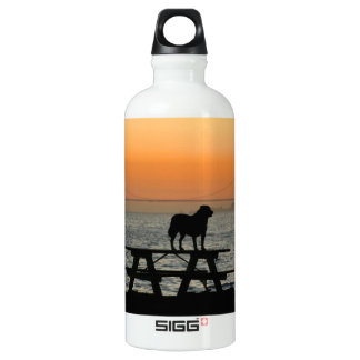 Dog in San Francisco Sunset Water Bottle