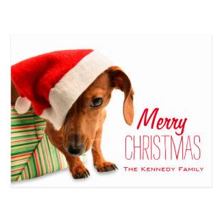 Dog in Santa hat Postcard
