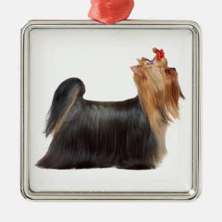 Dog in show metal ornament