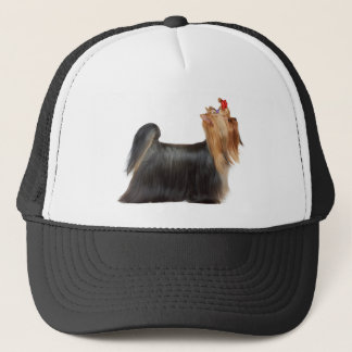 Dog in show trucker hat