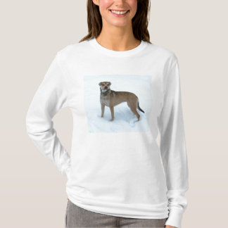 Dog in snow T-Shirt