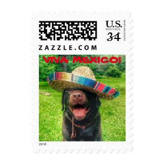 Dog in Sombrero $0.35 (Post Card) Stamp