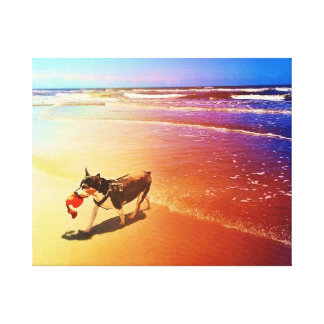 dog in sunrise at the ocean with a toy canvas print