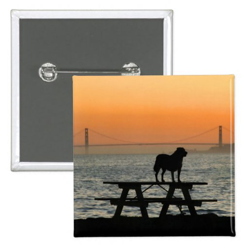 Dog in Sunset button