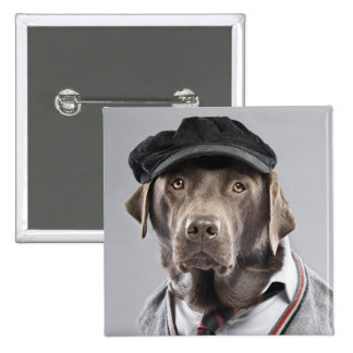 Dog in sweater and cap pinback button