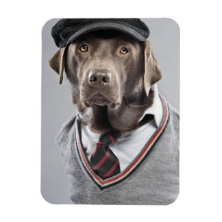 Dog in sweater and cap rectangular magnets