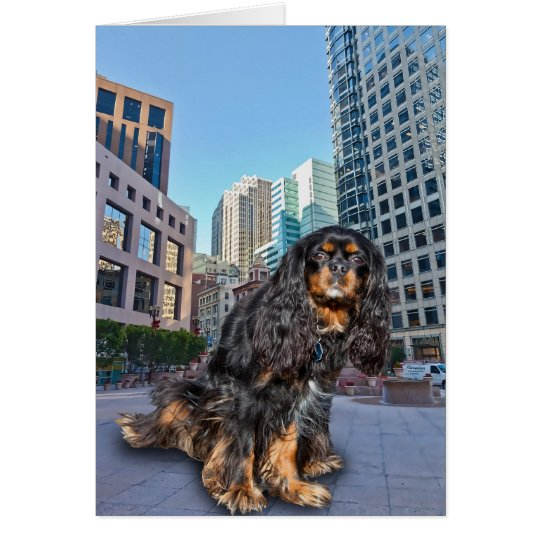 DOG IN THE CITY CARD