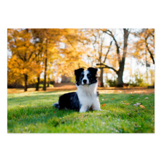 Dog in the Nature Large Business Card