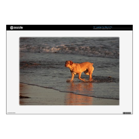 """Dog in the Sea 15"""" Laptop for PC and Mac Skin Skins For Laptops"""