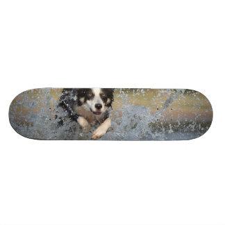 Dog in the Water Skateboard Deck