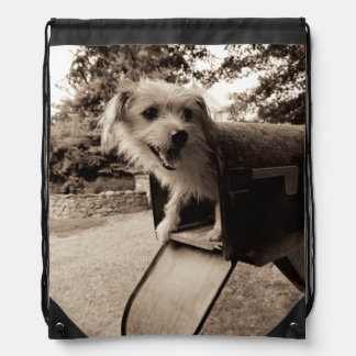 Dog Inside a Mailbox Drawstring Bag