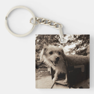 Dog Inside a Mailbox Keychain