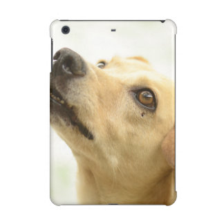 dog iPad mini cases