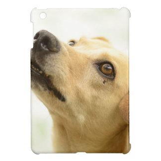 dog iPad mini cover