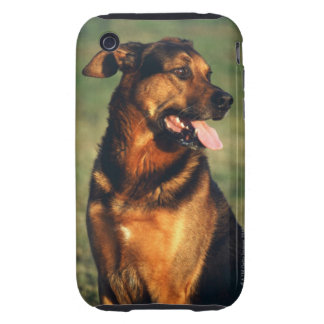 dog iPhone 3 tough cases