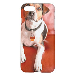 iPhone 7 Case with Jack Russell Terrier Phone Cases design