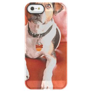 dog uncommon permafrost® deflector iPhone 5 case